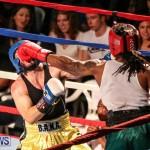 Fight Night XVII Invincible Bermuda, April 18 2015-196