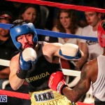 Fight Night XVII Invincible Bermuda, April 18 2015-197