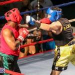 Fight Night XVII Invincible Bermuda, April 18 2015-20