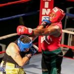 Fight Night XVII Invincible Bermuda, April 18 2015-21