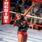 Fight Night XVII Invincible Bermuda, April 18 2015-212