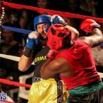 Fight Night XVII Invincible Bermuda, April 18 2015-29