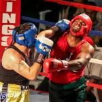 Fight Night XVII Invincible Bermuda, April 18 2015-32