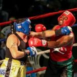 Fight Night XVII Invincible Bermuda, April 18 2015-39