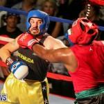 Fight Night XVII Invincible Bermuda, April 18 2015-41