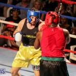 Fight Night XVII Invincible Bermuda, April 18 2015-42