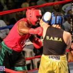Fight Night XVII Invincible Bermuda, April 18 2015-44