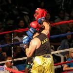Fight Night XVII Invincible Bermuda, April 18 2015-45