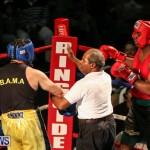 Fight Night XVII Invincible Bermuda, April 18 2015-47