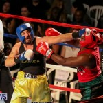 Fight Night XVII Invincible Bermuda, April 18 2015-50