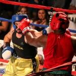 Fight Night XVII Invincible Bermuda, April 18 2015-51