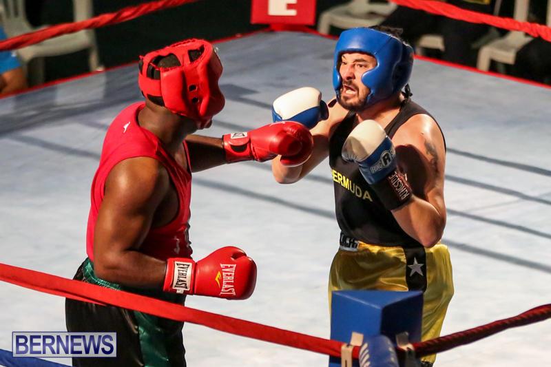 Fight-Night-XVII-Invincible-Bermuda-April-18-2015-52