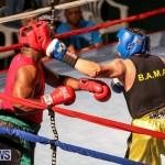 Fight Night XVII Invincible Bermuda, April 18 2015-53