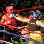 Fight Night XVII Invincible Bermuda, April 18 2015-54