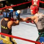 Fight Night XVII Invincible Bermuda, April 18 2015-62