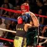 Fight Night XVII Invincible Bermuda, April 18 2015-66