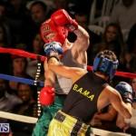Fight Night XVII Invincible Bermuda, April 18 2015-68