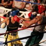 Fight Night XVII Invincible Bermuda, April 18 2015-69