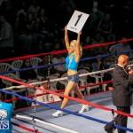 Fight Night XVII Invincible Bermuda, April 18 2015-7