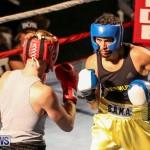 Fight Night XVII Invincible Bermuda, April 18 2015-70