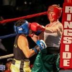 Fight Night XVII Invincible Bermuda, April 18 2015-73