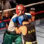 Fight Night XVII Invincible Bermuda, April 18 2015-75