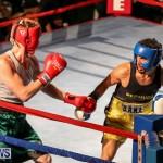 Fight Night XVII Invincible Bermuda, April 18 2015-78