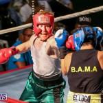 Fight Night XVII Invincible Bermuda, April 18 2015-83