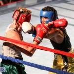 Fight Night XVII Invincible Bermuda, April 18 2015-85