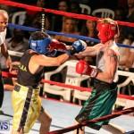 Fight Night XVII Invincible Bermuda, April 18 2015-86