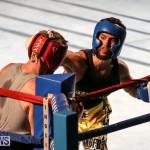 Fight Night XVII Invincible Bermuda, April 18 2015-87