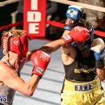 Fight Night XVII Invincible Bermuda, April 18 2015-88