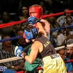 Fight Night XVII Invincible Bermuda, April 18 2015-91