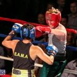 Fight Night XVII Invincible Bermuda, April 18 2015-95