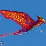 KiteFest Horseshoe Bay Beach Bermuda, April 3 2015-15
