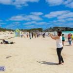 KiteFest Horseshoe Bay Beach Bermuda, April 3 2015-21