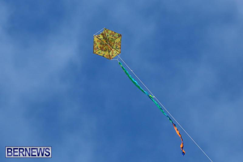 KiteFest-Horseshoe-Bay-Beach-Bermuda-April-3-2015-6