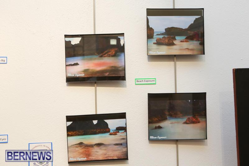 Middle-and-Senior-School-Art-Show-Bermuda-April-2-2015-81