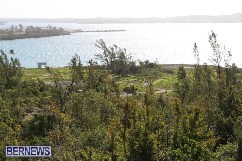 Morgans-Point-Bermuda-March-2015-10