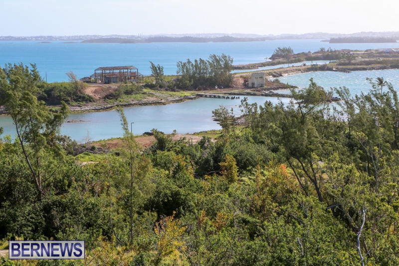 Morgans-Point-Bermuda-March-2015-13