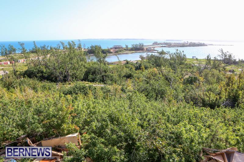 Morgans-Point-Bermuda-March-2015-20