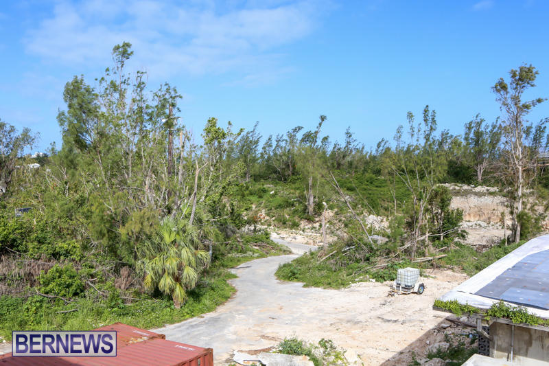 Morgans-Point-Bermuda-March-2015-25
