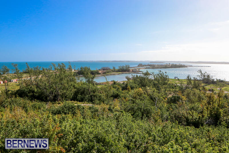 Morgans-Point-Bermuda-March-2015-4