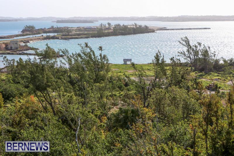 Morgans-Point-Bermuda-March-2015-9