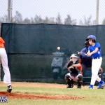 bermuda YAO Baseball april 2015  (1)