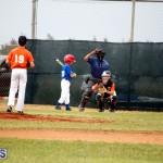 bermuda YAO Baseball april 2015  (10)