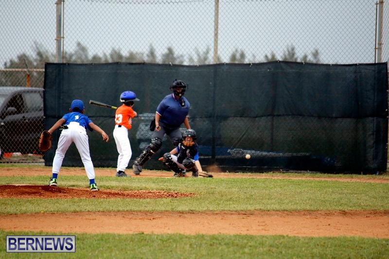 bermuda-YAO-Baseball-april-2015-14