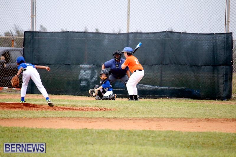 bermuda-YAO-Baseball-april-2015-16