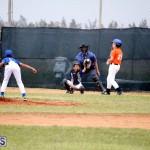 bermuda YAO Baseball april 2015  (18)