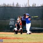 bermuda YAO Baseball april 2015  (2)